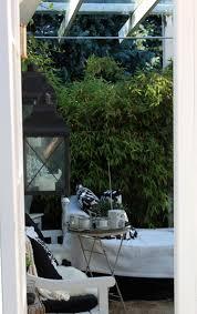 Bambus Garten Design Bambus Im Garten Faszinierend Und Vielseitig Einsetzbar