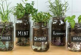 Indoor Herb Garden Ideas by Indoor Herb Garden Ideas And Helpful Tips For Maintaining