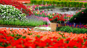 amazing picture of beautiful flower garden ideas wedding dress