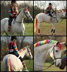 rainbow brite pony looking for halloween horse costume ideas