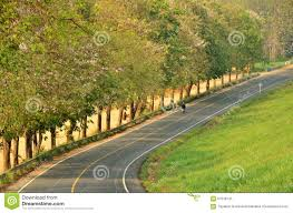 beautiful road in the middle of beautiful tree and hill stock