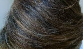 pictures of grey hair with lowlights blending gray hair with highlights and lowlights hair styles