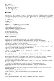 sample resume of business analyst software professional resumes