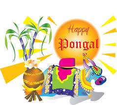 Pongal Invitation Cards 50 Best Pongal Greeting Pictures And Images