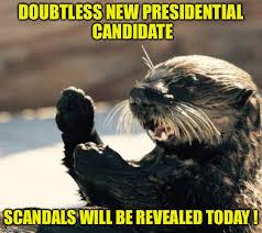 Sea Otter Meme - oregon sea otter memes imgflip