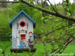 Garden Ideas For Small Garden Small Garden Design The Micro Gardener