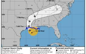 Map Of Gulf Coast Florida by Tropical Storm Cindy Flooding Areas Of Gulf Coast Bradenton Herald