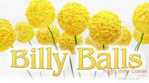 billy balls how to make billy balls pretty witty cakes
