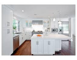 all white home interiors all white kitchens picturesque design ideas white kitchen dansupport