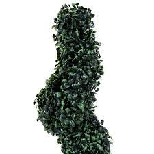 Laurel Topiary - charles bentley pair of 3ft spiral topiary trees
