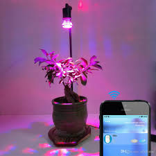 10w led plant grow lights desk stand with smart timer switch can