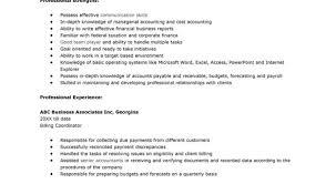 resume accountant resume ideal accountant resume summary sample