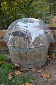 garden pots australia photo album best 25 wine barrel planter ideas on pinterest wedding ideas