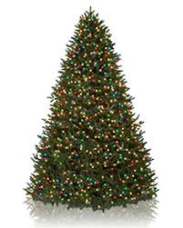 white pre lit christmas tree with colored lights pre lit artificial christmas trees color clear lights balsam