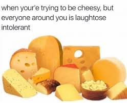 Cheese Meme - cheese meme by conanthekosherham memedroid