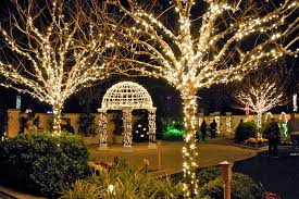 Botanical Gardens Volunteer by Pinellas County Press Releases Volunteers Needed For Holiday Lights