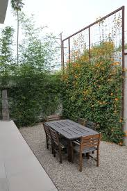 Trellis Seattle 216 Best Modern Trellis Images On Pinterest Garden Trellis