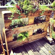 plant stand herb garden stand fascinating photos concept small
