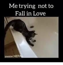 In Love Memes - 25 best memes about falling in love memes falling in love memes