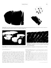 glitsch nye tray big chemical encyclopedia