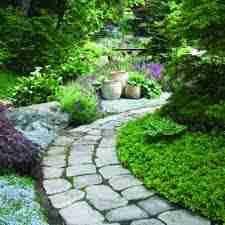 vocabulary gardens and gardening english