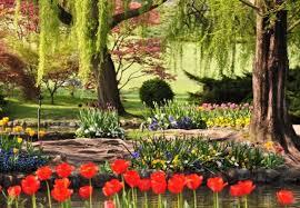 immagini di giardini fioriti feste di primavera gli eventi e i giardini fioriti da non perdere