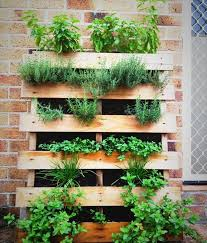 herbs planter simple pallet herb garden planning on basil thyme rosemary