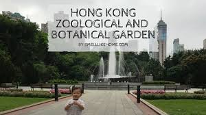 Hong Kong Zoological And Botanical Gardens Hong Kong Zoological And Botanical Gardens Review Smell Like Home