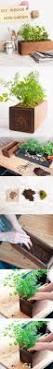54 best mini moestuinen images on pinterest gardening vegetable