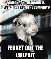 Ferret Meme - executive ferret memes quickmeme