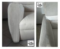 gatti divani protezione divani da unghie gatto cat friendly sofa