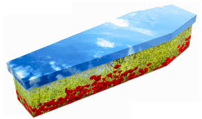 cardboard coffin cardboard coffins in fashion funeral cover quotes