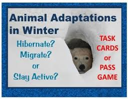 animal adaptations in winter task cards pass game hibernate
