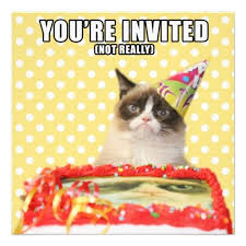 19 Awesome Grumpy Cat Christmas - 19 best grumpy cat party images on pinterest cat party grumpy cat