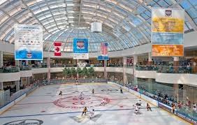 file palace at the west edmonton mall during the brick youth