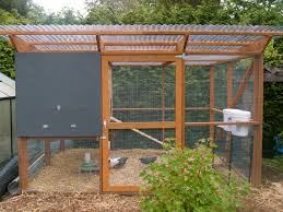 small chicken coop plans and designs ideas with small backyard
