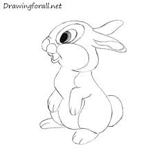 how to draw a rabbit for kids drawingforall net