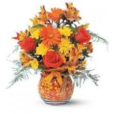 halloween flowers and gifts oklahoma city ok florist howard