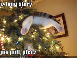 Tree Meme - christmas tree cat meme 031 why cats rule the world