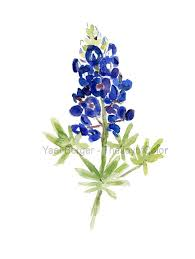 19 best bluebonnet art images on pinterest watercolor tattoos