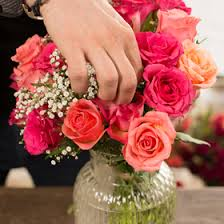 Arranging Roses In Vase Flower Market Lidl Uk