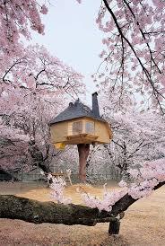 2219 best treehouses images on pinterest treehouses