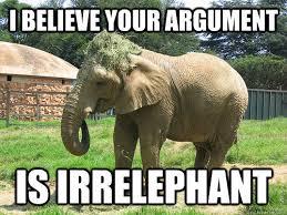 Elephant Meme - elephant meme google search elephants pinterest animal