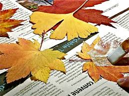 Drying Flowers In Books - fall leaves and mod podge magic gingerbread snowflakes