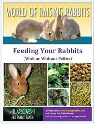 rabbit food rabbit feed excellent rabbit food available online