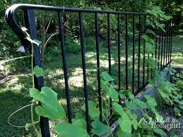 railing into garden trellis just call me homegirl