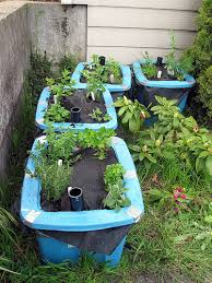 Container Gardening Ideas Picture About Garden Ideas Picture About Garden Ideas Container