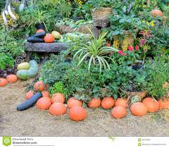 decorated ripe vegetables garden stock photo image 58122355
