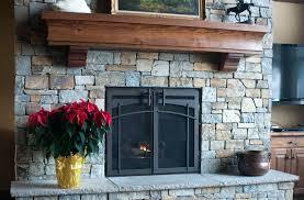 cool fireplace doors suzannawinter com