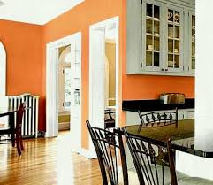 Kitchen Wall Paint Colors Ideas Terracotta With Gray Home Color